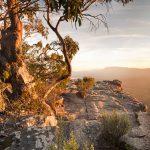 nature pillar of health